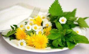 narodni kalendar branja ljekovitog bilja